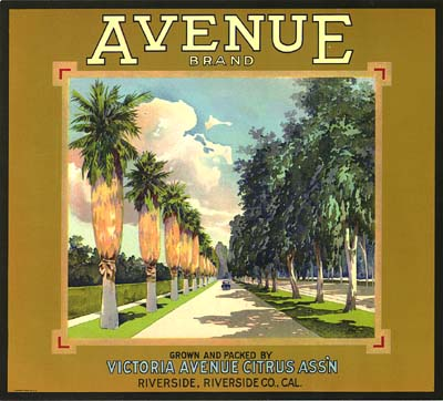Avenue Orange Box Label